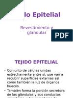 Unidad 2 Tejido Epitelial