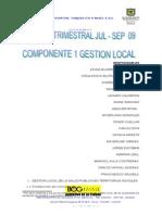 Informe Consolidado Gestion Local Jul-Sept 2009