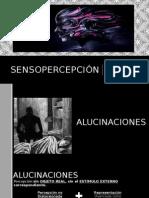 Sensopercepción Psicologia