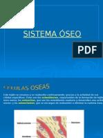 Sistema Locomotor - Oseo y Muscular