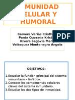 sistema inmune Histofisiología
