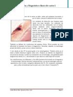 03.- Dx y Diagnóstico Clínico de Lesiones de Caries I