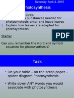 Lesson_2_Photosynthesis_and_adaptations_of_leaves.ppt