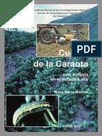 Cultivo_caraota_Lara (1)