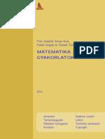 Matematika Analízis 1 (példatár)