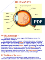 Optics Presentation with example
