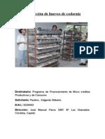 Proyecto Producción Huevos de Codorniz
