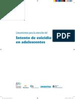 2012-intento-suicidio