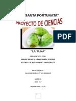 Proyecto de La Tuna 2015