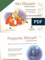 Mi Pequeño Mozart Pato Rebolledo