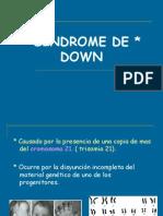 sndromesmscomunesdegenticamdica-100424150154-phpapp01