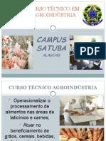 Apresentação Curso Técnico Em Agroindústria e Da Disciplina