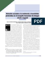 Mutaciones-resistencias Insecticidad Aedes