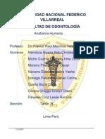 aplicacion de la anestesia local en la odontologia y sus consideraciones.docx