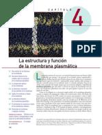 Karp - Potenciales de Membrana (1