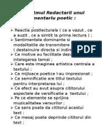Algoritmul Redactarii Unui Comentariu Poetic