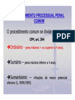 Procedimento Ordinário (1)