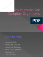 Why Humans Are Complex Organisms