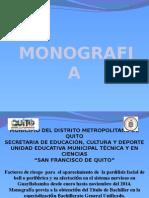 DIAPOSITIVAS-MONOGRAFIA.pptx