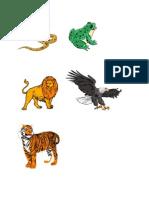 haiwan karnivor