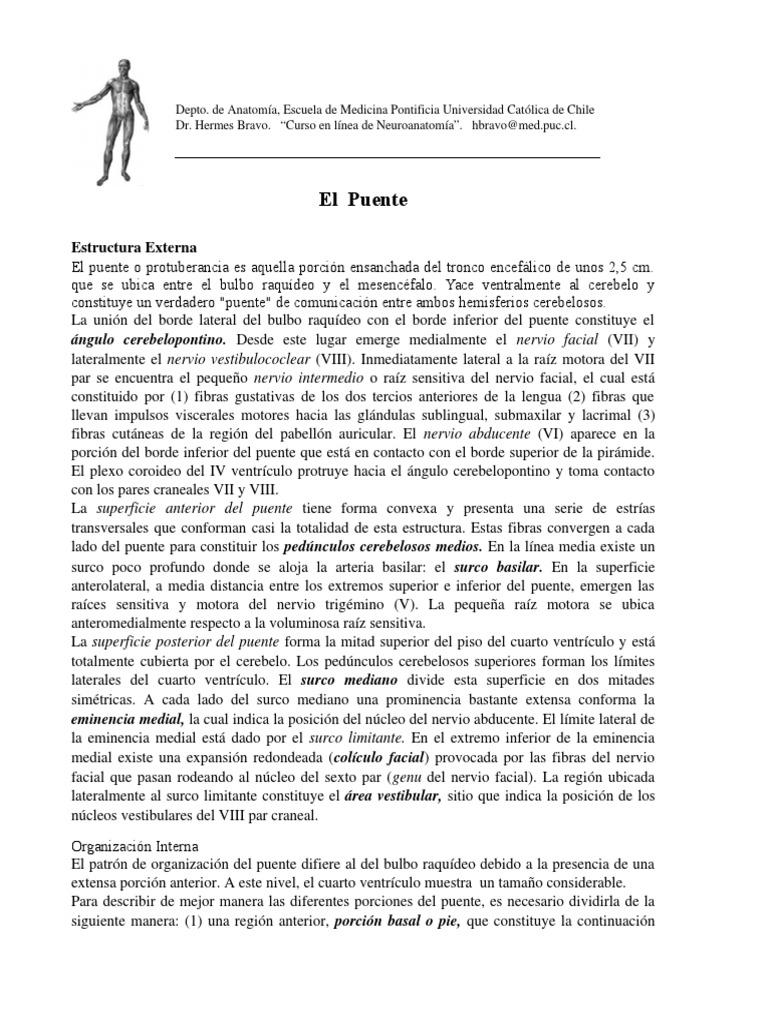 Atractivo Patrón Básico Puente De Tejer Colección de Imágenes ...