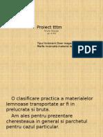 proiect ttm