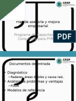Plan de Asesoría y Mejora Empresarial