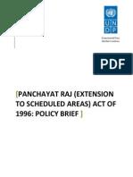 UNDP Policy Brief on PESA