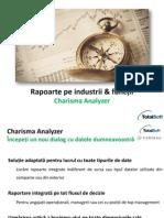 Tipuri de Rapoarte Pe Industrii Functii Charisma Analyzer