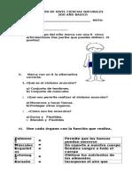Prueba_Nivel_Ciencias_2_Basico.doc