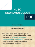 31007942-HUSO-NEUROMUSCULAR.ppt