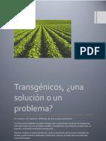 Transgénicos, ¿solución o problema?