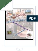 Youblisher.com-1066767-Manual de Laboratorio de Qu Mica de 12