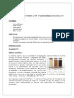 PRACTICA 2 Materia Organica e Impurezas Autoguardado