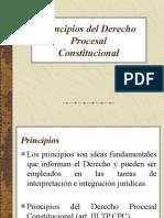 3 Principios Del Derecho Procesal Constitucional
