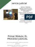 138 La Pericia Judicial Modulo1 Proceso