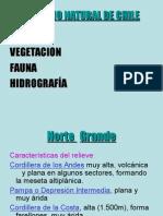 Relieves, Climas, Vegetacion y Fauna de Chile