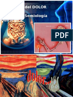 dolore perineale rayo