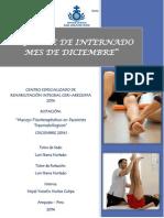 Informe Mensual de Internado Del Mes de Diciembre 2014