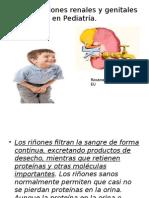 Malformaciones Genitourinarias en Niños
