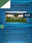 Futuro Ganadería Ecuador (2015)