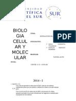 Informe de Biologia (1)
