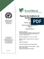 Auditoria-Scolel-te-09-VP_borrador_.pdf