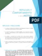 TEMA 4 REFLEJOS Y COMPORTAMIENTO MOTRIZ.ppt