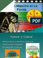 Kultura Mapuche en La Florida