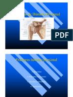 Humero Proximal, fracura