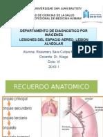 patron alveolar ppt.pptx