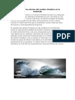 Cuáles Son Los Efectos Del Cambio Climático en La Antártida