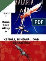 Ayo Berantas Malaria