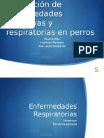 Presentacion Farmaco I